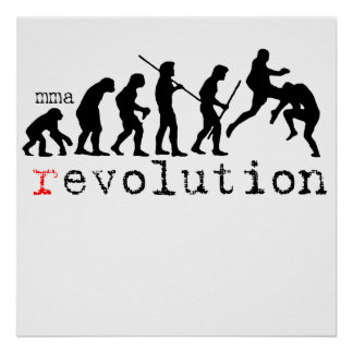 mma r evolution chart Poster Print