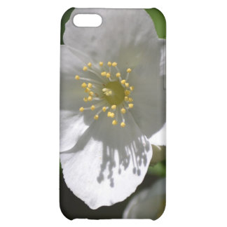 Mock Orange Blossom Cover For iPhone 5C