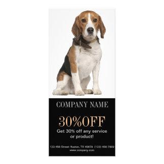 Modern cute animals pet service beauty salon custom rack card