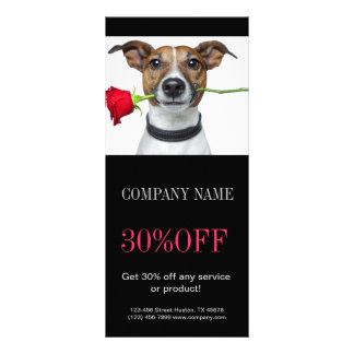 Modern cute animals pet service beauty salon custom rack cards