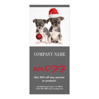 Modern cute animals pet service beauty salon full color rack card