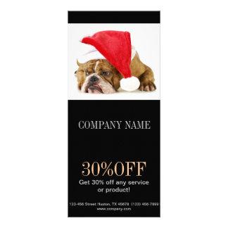 Modern cute animals pet service beauty salon full colour rack card
