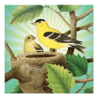 modern trend birds and nest personalized invitations