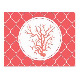 modern trends coral shell post cards
