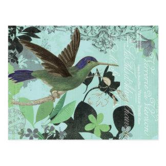 Modern Trends Hummingbird Postcards