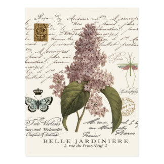modern vintage French Lilacs Post Card