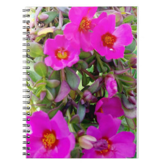 Moments of Magenta in Maine Notebook (80 Pages)
