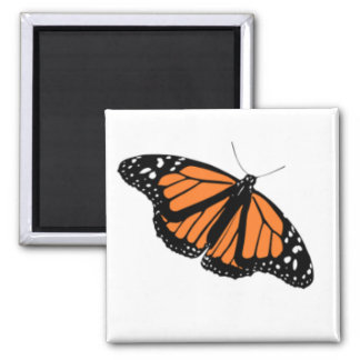 Monarch Butterfly Graphic Magnet
