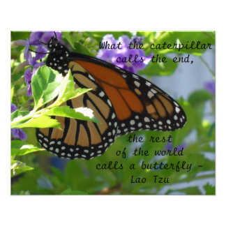 Monarch Butterfly Inspirational Quote Poster