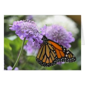 Monarch Butterfly on a Purple Flower Card