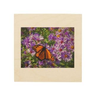 Monarch Butterfly on Purple Aster Flowers Wood Print