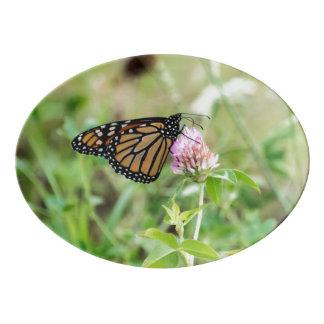 Monarch Butterfly Porcelain Serving Platter