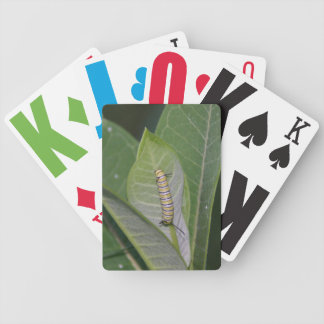 Monarch Caterpillar playing cards