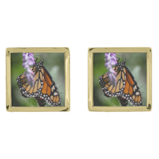 Monarch Danaus Plexippus Gold Finish Cuff Links