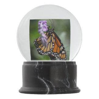 Monarch Danaus Plexippus Snow Globe
