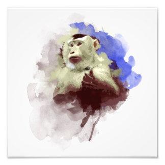 Monkey Art Photo Print