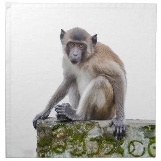 monkeys in the jungle napkin