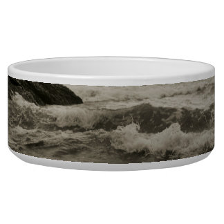 Montana de Oro Pet Bowl