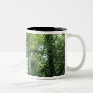 Monteverde Cloud Forest, Costa Rica. Two-Tone Coffee Mug