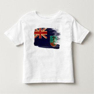 Montserrat Flag Toddler T-Shirt
