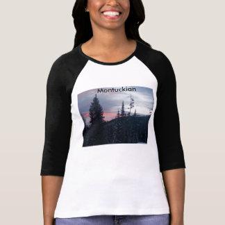 Montuckian Bella+Canvas 3/4 Sleeve Raglan Tshirt