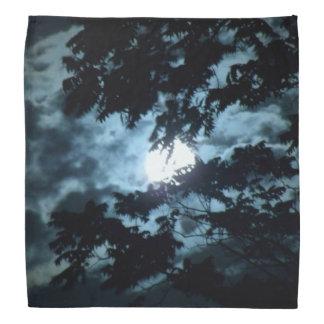 Moon Illuminates the Night behind Tree Branches Bandana
