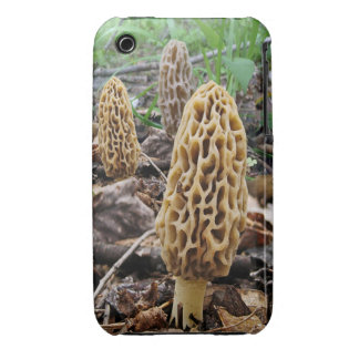 Morels iPhone 3 Covers