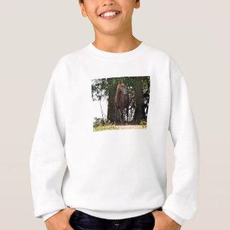 Morgan Horse Products!! Sweatshirt