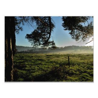 Morning at the Farm Photograph