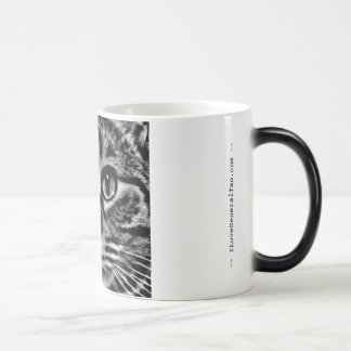 Morphing Mug (heat-activated) - General Tso
