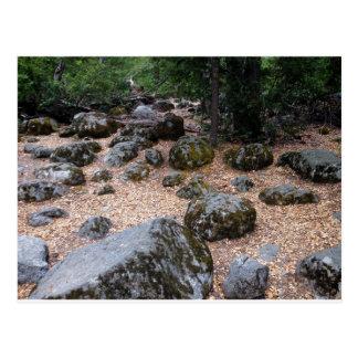 Moss Rocks Postcard