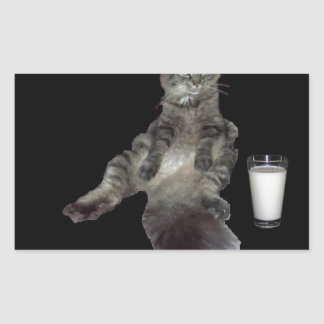 Most Interesting Cat #1.jpg Sticker