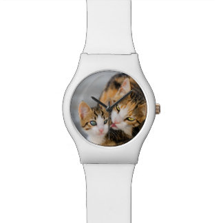 Mother Cat Loves Cute Kitten Photo - women Watch