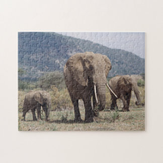 Mother elephant walking with elephant calf puzzle
