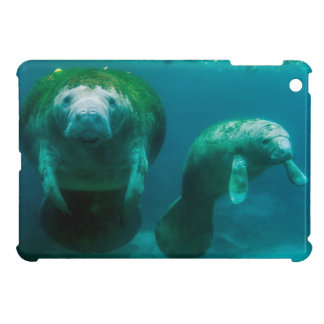 Mother manatee with her calf in Crystal River Case For The iPad Mini
