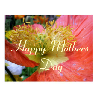 Mothers Day greeting Postcard