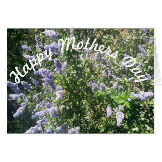 Mothers Day lilac flowers Card