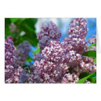 Mother's Day lilac note card 2015