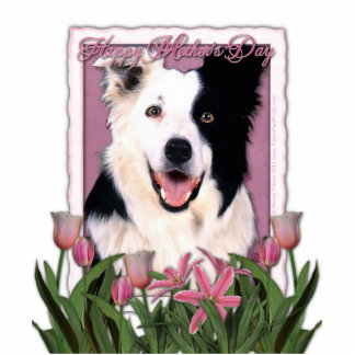 Mothers Day - Pink Tulips - Border Collie Standing Photo Sculpture