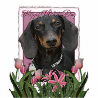 Mothers Day - Pink Tulips - Dachshund - Winston Standing Photo Sculpture