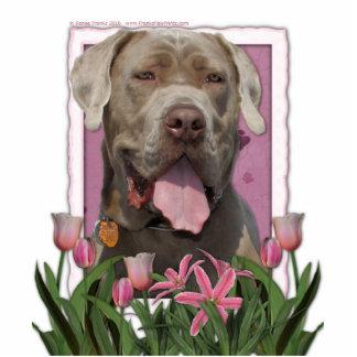 Mothers Day - Pink Tulips - Mastiff - Snoop Standing Photo Sculpture