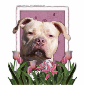 Mothers Day - Pink Tulips - Pitbull - Jersey Girl Standing Photo Sculpture