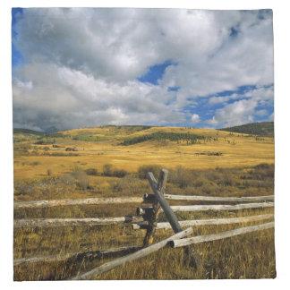 Mount Haggin NWR near Anaconda Montana Napkin