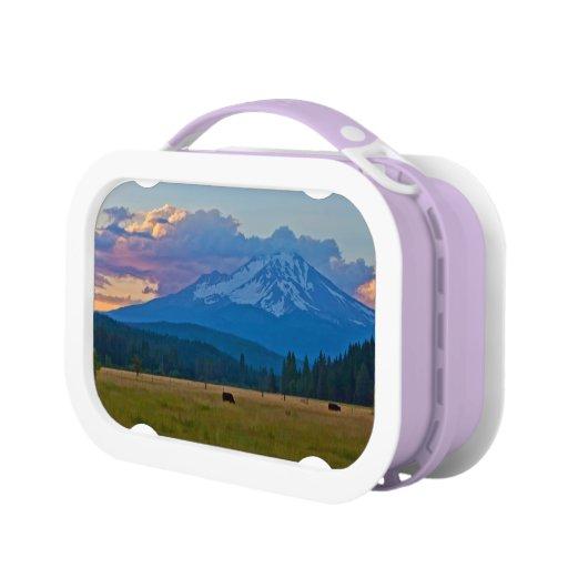 MOUNT SHASTA LUNCHBOXES