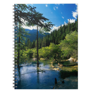 Mountain Forest Lake Notebook