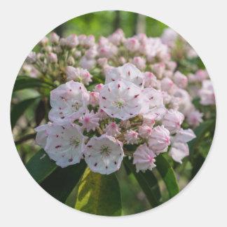 Mountain Laurel Wildflower Sticker