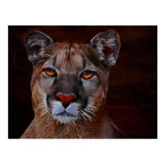 Mountain lion puma postcard