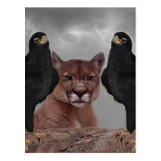 Mountain lion with eagles postcard