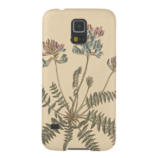 Mountain Milkvetch Botanical Illustration Case For Galaxy S5