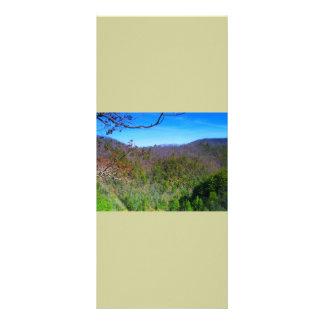 Mountain View Rack Card